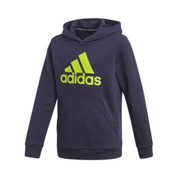 Must Have Badge of Sport Hoody Boys