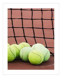 Tecnifibre Tennisbälle